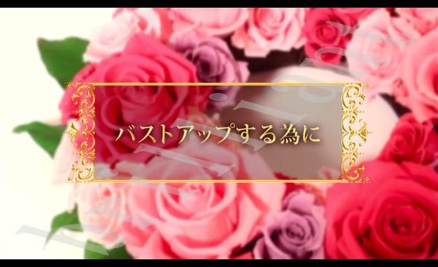 binyuukakumei-taiken3