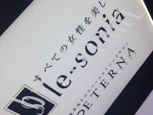 lesonia-taiken1