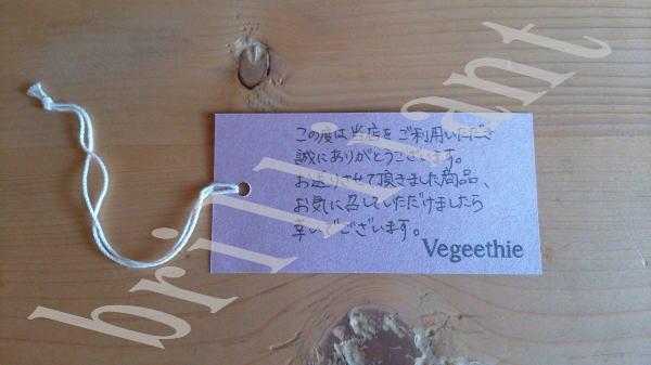 vegeethie-taiken4